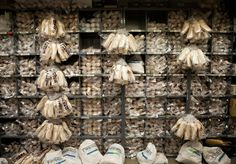 8,500 pairs of pointe shoes for the New York City Ballet's 'The Nutcracker.' Each dancer can go through 1-2 pairs each performance.