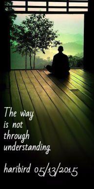The way is not through understanding. haribird 05/13/2015