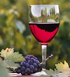 Goods from Mediterranean Basin - Wine