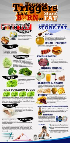 Hormone Triggers that Burn or Store Fat