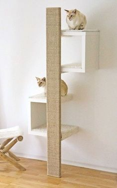 Stunning Cat Furniture Design Ideas That You Need To Try Ikea White Shelves, Cat Wall Shelves, Ikea Lack Shelves, Vesper Cat Furniture, Modern Cat Furniture, Pet Furniture, Furniture Design, Furniture Cleaning, Animal Room