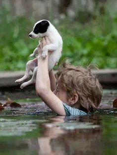 Saving a pet during natural disasters....Serbian floods, 2014