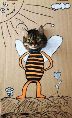 Cat… ≧^◡^≦ °