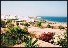 Minhas fotos do Mar Vermelho-Egito... Aguas azuis, golfinhos, corais e... camelos! - Uma das praia privadas dos hoteis......