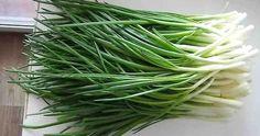 Farm Gardens, Green Beans, Cabbage, Life Hacks, Vegetables, Food, Gardening, Vietnam, Plants