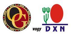 Organo Gold vs. DXN. Vergleich für die richtige Entscheidung