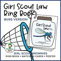 Brownies Activities, Bug Activities, Girl Scout Brownie Badges, Brownie Girl Scouts, Girl Scout Law, Girl Scout Leader, Daisy Scouts, Bug Crafts, Winter Fun