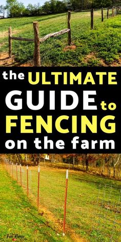 Homestead and Survival: Get the most information on different types of farm fencing. Everything you need to know about t-posts, wood posts, welded wire, woven wire and more. Homestead Layout, Homestead Farm, Homestead Survival, Homestead Living, Survival Skills, The Farm, Mini Farm, Small Farm, Farm Fence
