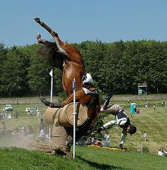This is why i dont like cross country when theres high jumps because i could see my horse tripping over the logs My Horse, Horse Girl, Horse Riding, Cross Country Jumps, Funny Horses, Horse Pictures, Horse Photos, Show Jumping, Show Horses