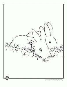 spring bunny coloring page 231x300 Bunny Coloring Pages