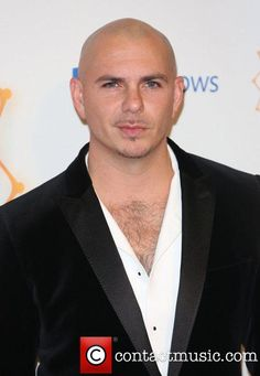 Pitbull Chest Hair Images