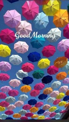 Good morning have a good day Good Morning Friends Quotes, Good Morning Happy Sunday, Good Morning My Friend, Morning Morning, Good Morning Messages, Good Morning Greetings, Good Morning Good Night, Good Morning Wishes, Morning Quotes