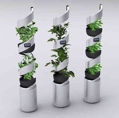 another twist on hydroponic gardening #hydroponic #gardenign #indoorgardening