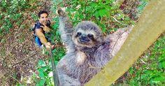 As selfies mais incríveis do ano