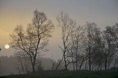 Good morning! - http://www.fiftyfiftyblog.de/zurueckgelehnt-im-haengesessel/