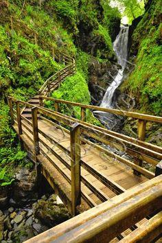 Glenariff Forest Park ~ Co Antrim, Ireland:
