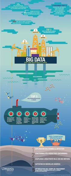 big-data-umanis-france                                                       …