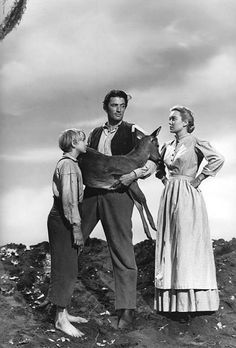 Claude Jarman Jr., Gregory Peck, Jane Wyman-- The Yearling