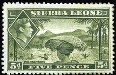 King George VI Sierra Leone 1938