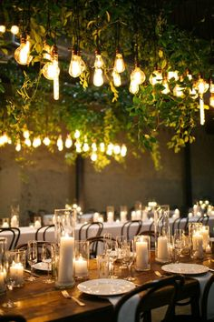 edison bulb and green vine installation over reception tables // wedding, candle centerpiece, lighting, mood, ambiance, industrial, farm table, rustic