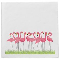 Cuban Pink Flamingos