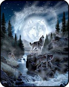 Queen Size Wolf And Moon Mink Blanket