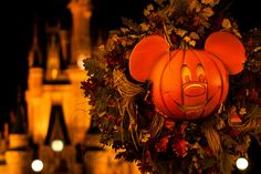 Fall is a great time to go to Disney World and don't forget Mickey's Not So Scary Halloween. Visit The Source 4 Travel Facebook Page.