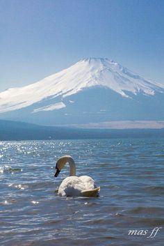 Fuji Japan by daidaikemool on Day Trips From Tokyo, Mont Fuji, Petkovic, In Natura, All Nature, Animal Totems, Snow Skiing, Swan Lake, Ski And Snowboard