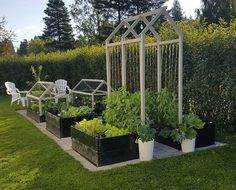 6 Loving Tips AND Tricks: Front Yard Vegetable Garden Food vegetable garden kids growing plants.Vegetable Garden Tips How To Build vegetable garden inspiration raised beds.Home Vegetable Garden Fruit Trees. Backyard Vegetable Gardens, Potager Garden, Veg Garden, Vegetable Garden Design, Garden Beds, Outdoor Gardens, Small Yard Vegetable Garden Ideas, Kitchen Garden Ideas, Vegetable Boxes