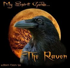 Native American Omens and Meanings of Animals and Animal Spirits