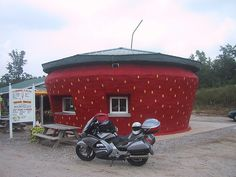 World's Largest Strawberry    ...is at the Berry Patch on US 220, just South of Ellerbe, North Carolina