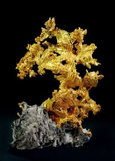 """Excellent """"gold bullion"""" detail is offered on our website. Minerals And Gemstones, Rocks And Minerals, Gold Prospecting, Gold Bullion, Beautiful Rocks, Rocks And Gems, Stones And Crystals, Precious Metals, Dead Beat"""