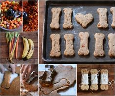 You are going to love these Natural Dog Treats Recipe Ideas and we've rounded up the most popular for you to try. Watch the video too.