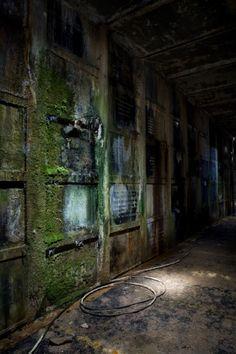 Blue Green; La Crypte des Fleurs © opacity.us