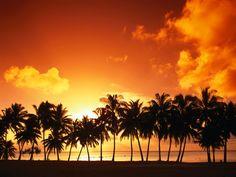 Aitutaki Island Sunset Cook Islands  #Aitutaki #Cook #Island #Islands #Sunset