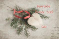 Bonne Année 2015! |  odile lm
