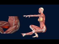 One Leg Squat Pistol Squat Anatomy Animation Progression EasyFlexibility