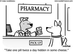 Need some help giving your pup their medicine? Read our blog post How To Give Your Stubborn Dog A Pill for tips and advice here: http://www.vet-organics.com/how-to-give-your-stubborn-dog-a-pill/ !