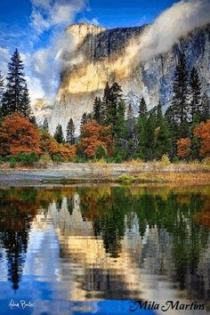 Revisit Yosemite with my kids. This was a sight to see at our honeymoon :) El Capitan, Yosemite, California. Places To Travel, Places To See, Travel Destinations, Beautiful World, Beautiful Places, Amazing Places, Amazing Photos, Peaceful Places, Landscape Photography