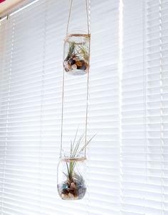 DIY Hanging Mason Jar Planters #BACKTOSCHOOL
