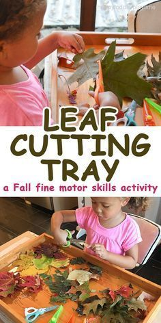 CUTTING TRAY A quick and easy Fall fine motor scissor skills activity cutting leaves. It is something you can do after a nature walk.A quick and easy Fall fine motor scissor skills activity cutting leaves. It is something you can do after a nature walk. Fall Preschool Activities, Cutting Activities, Motor Skills Activities, Toddler Learning Activities, Preschool At Home, Nature Activities, Sensory Activities, Preschool Curriculum, Physical Activities