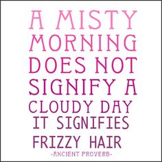 A misty morning doesn't signify a cloudy day, it signifies frizzy hair Funny Famous Quotes, Motivational Quotes For Women, Inspirational Verses, Humorous Quotes, Woman Quotes, Life Quotes, Qoutes, Quotable Quotes, Welsh Words