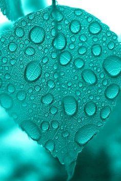 turquoise & raindrops