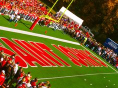 St. John's University: Collegeville, MN  One of my favorite places in the entire world