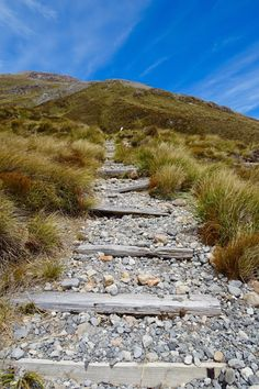 New Zealand's South Island is the perfect place to don your hiking boots and sense of adventure; here are the best tracks to add to your travel itinerary.