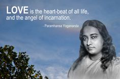 An introduction to the life of Paramhansa Yogananda and his spiritual teachings, including meditation and Kriya Yoga. Spiritual Images, Spiritual Quotes, Yogananda Quotes, Autobiography Of A Yogi, I Love You God, Words To Live By Quotes, Self Realization, Meditation Techniques, Empowering Quotes