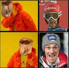 Ski Jumping, Skiing, Memes, Poland, Funny Things, Sport, Pictures, Ski, Photos