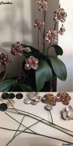 Nespresso:Ramo di Orchidea!                                                                                                                                                                                 Mais
