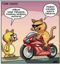 Lütfen işi şansa bırakmayın, önce güvenlik :) #sempatili #kedi #kedicik #kask #motor #karikatür #mizah #güvenlisürüş #komik #motorsiklet #motorcu