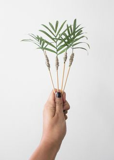 palm frond cocktail stirrers!!